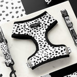 Load image into Gallery viewer, Monochrome Spots Reversible Harness, Lead & Collar Bundle