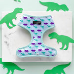 Load image into Gallery viewer, Jurassic Pup Dinosaur Reversible Harness