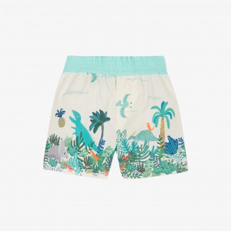 Bermuda Print Swim Shorts - Primitive Rock
