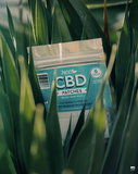 CBD Transdermal Patches