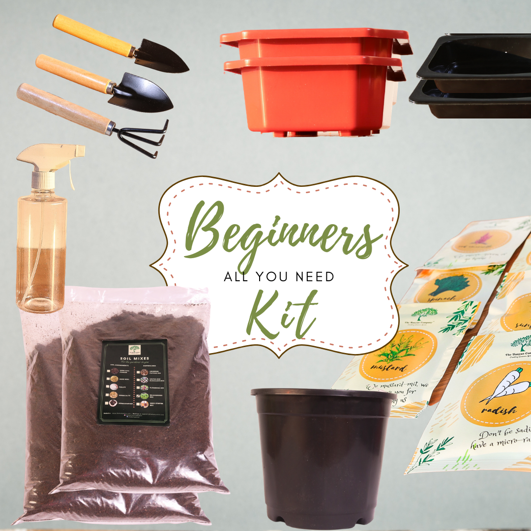 All You Need Gardening Kit for Beginners