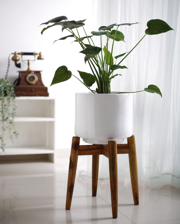 Minimal Style Planter with Stand
