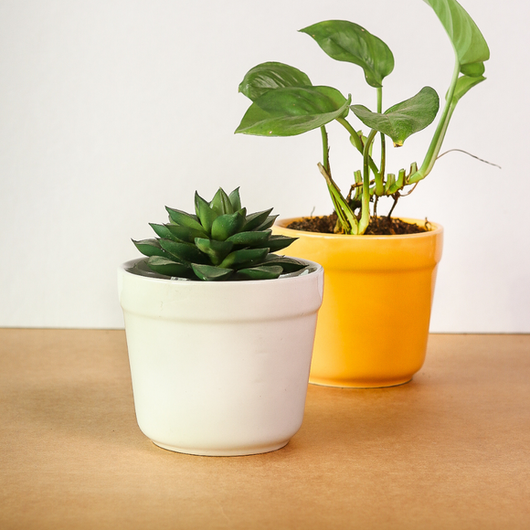 White-Yellow Ceramic Pot (Pair)