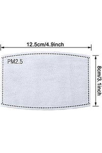 PM2.5 Replacement Filters 10 pack