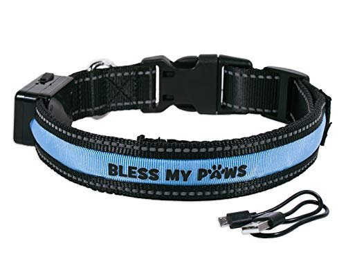 Swanson Christian Dog Collar-Bless My Paws-LED USB/Solar Rechargeable-Large-Blue