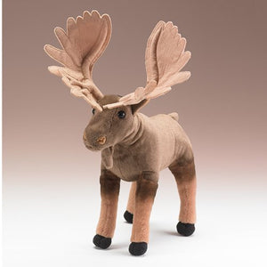 Moose (Conservation Critters)