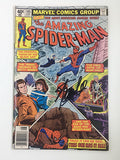 Amazing Spider-Man #195 Signed by Stan Lee