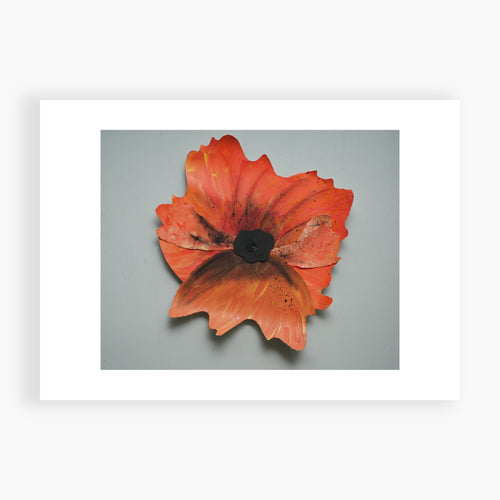 Pinwheel Poppy - Remembrance Day November 11 Printed Card