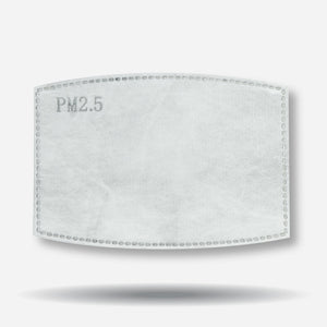 PM2.5 Disposable Filters (10/Pack)