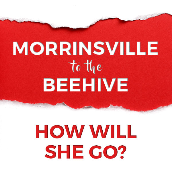 Morrinsville To The Beehive… How Will She Go