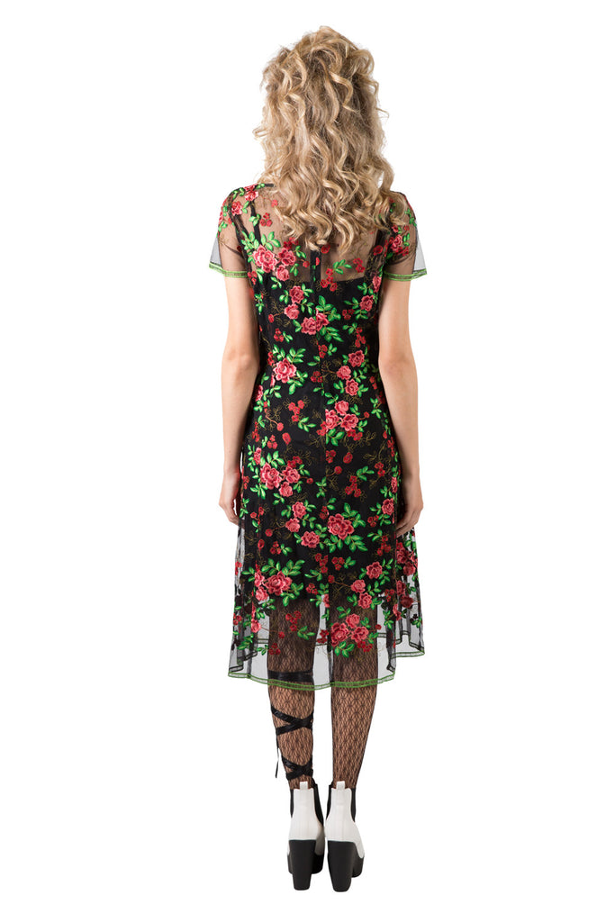 Gale Aster Dress | Sheer Floral Dresses | Occasion Wear | Annah S