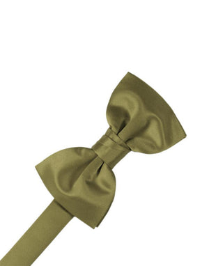Luxury Satin Bow Tie - Fern - corbatin caballero