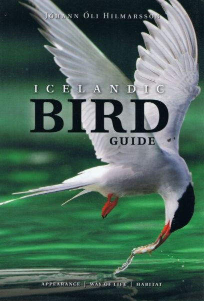 Icelandic Bird Guide: Appearance, Way of Life, Habitat - ISLANDICA.com