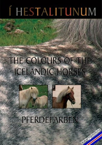 The Colors Of The Icelandic Horses (Í hestalitunum) (DVD) - ISLANDICA.com