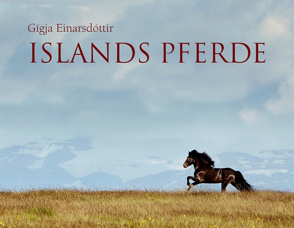 The Horses of Iceland - ISLANDICA.com
