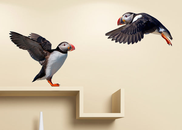 WALL STICKERS: LUNDI - PUFFINS by Vegg - ISLANDICA.com