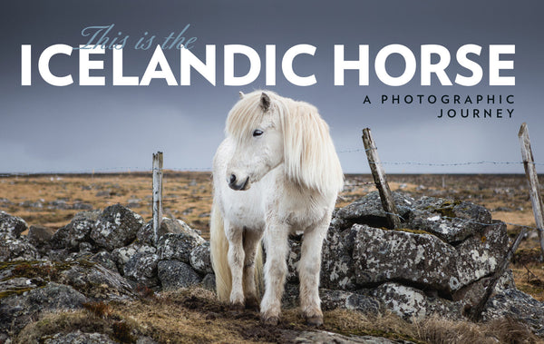 This is the Icelandic horse - ISLANDICA.com