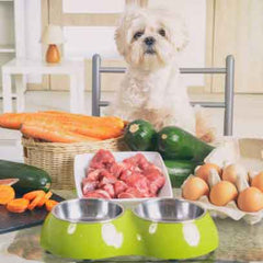 Home Cooked Diet Recipe for Dogs