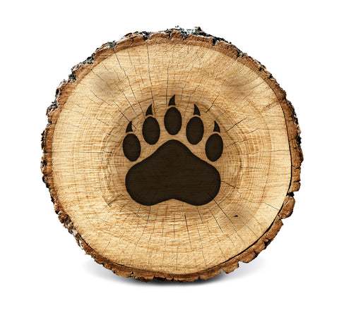 Wood BurnStencil™ - Bear Paw