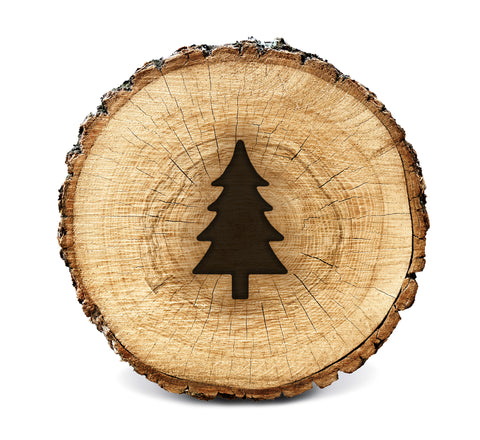 Wood BurnStencil™ - Pine Tree