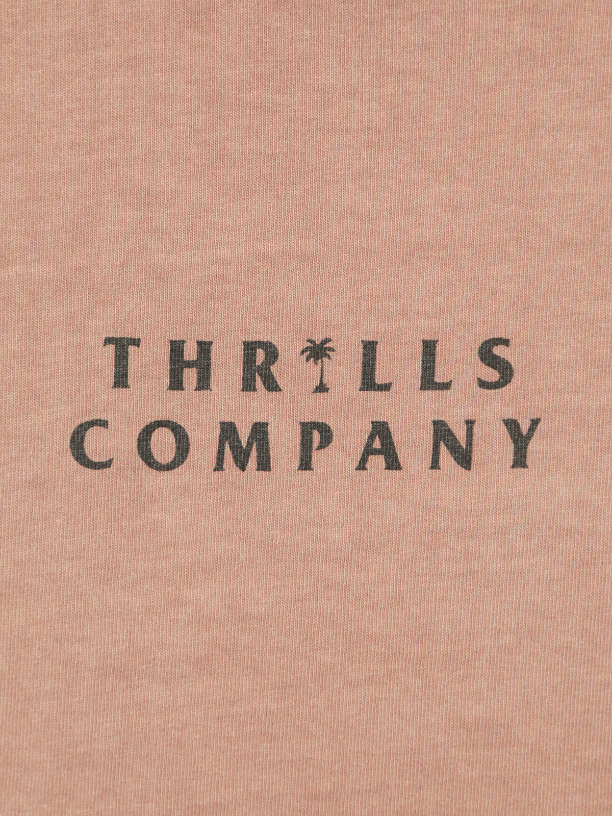 Palmed Thrills Company Band T-Shirt in Cork