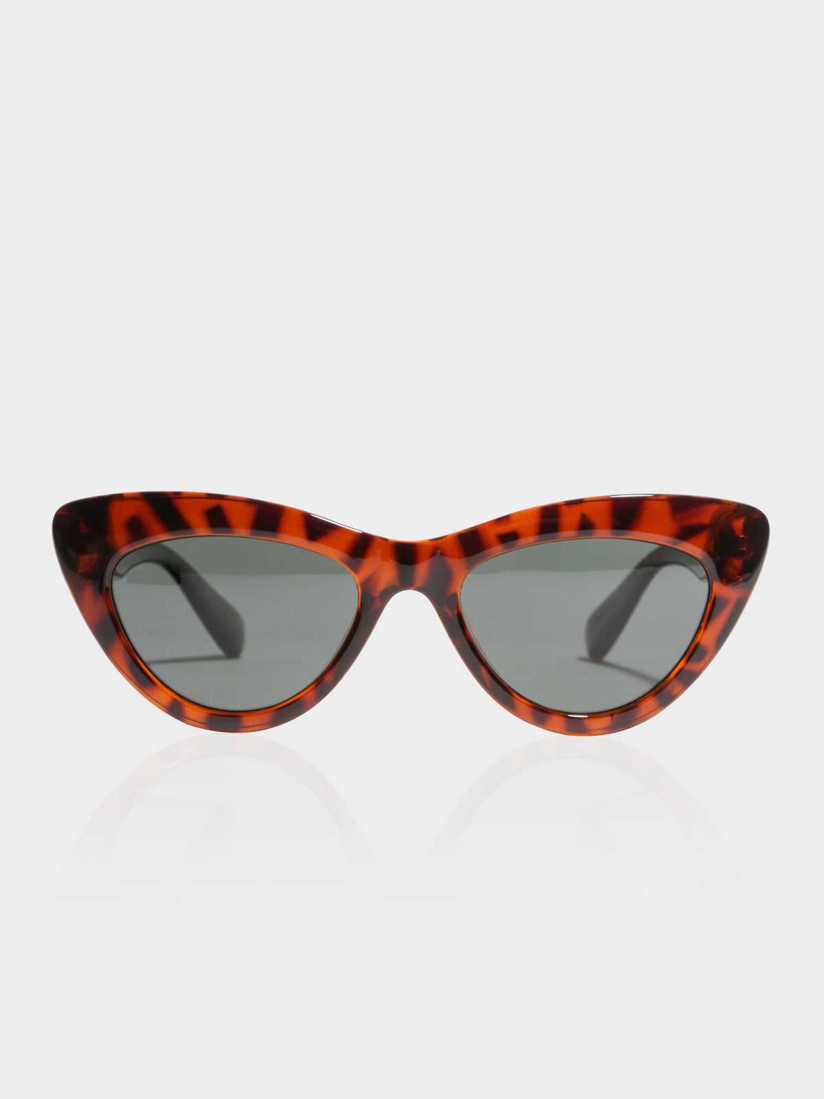 Ams Polaraised Sunglasses in Tortoise