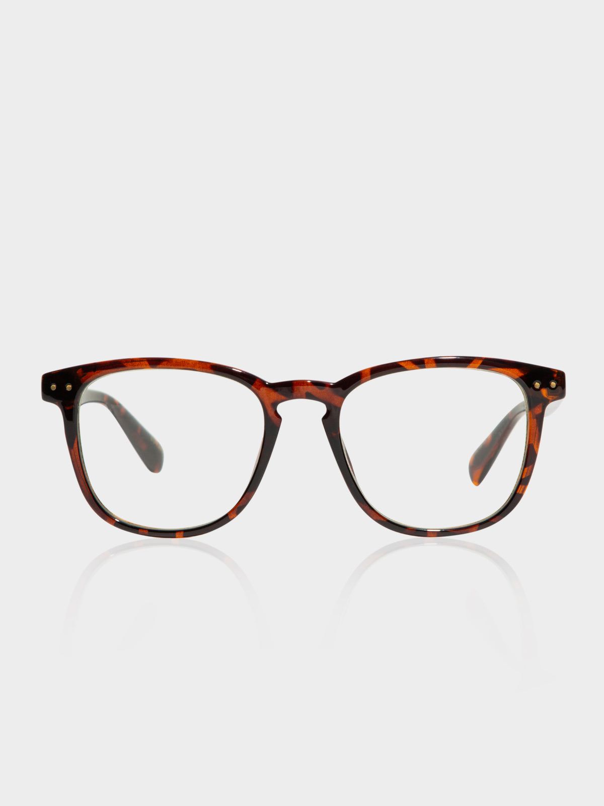City TLP27 Polished Tortoiseshell Glasses in Clear