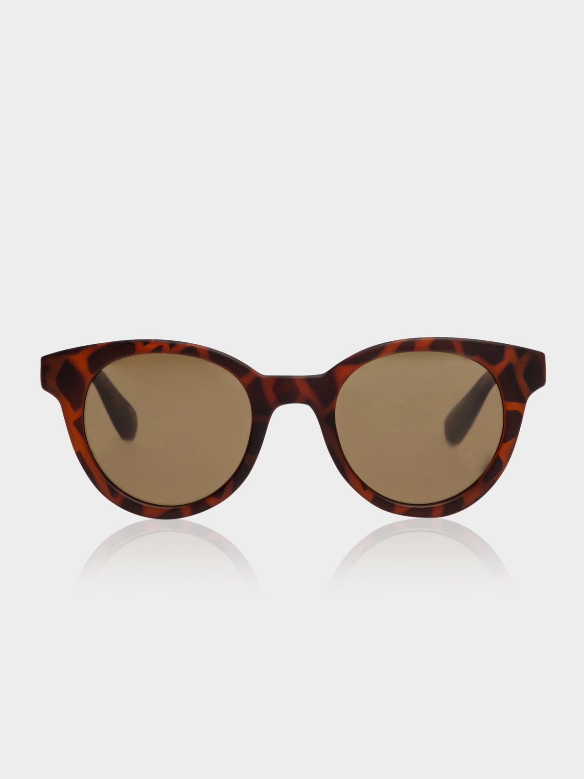 Park TLM3 Polished Sunglasses in Tortoise Shell