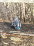Ornate Labradorite & Abalone Ring in Sterling Silver, Size 8.5