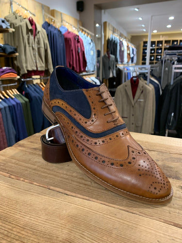 Marc Darcy tan and navy suede brogue from Gere Menswear