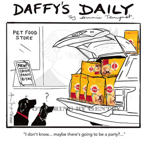 Daffy's Daily - Maybe a party?? (DD04)
