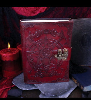 Wine and bronze Baphomet journal
