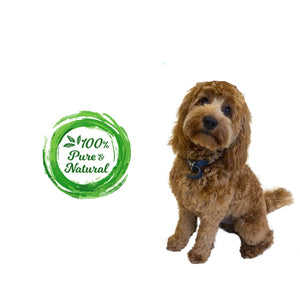 Natural Doggy Treats - 2 Dogs
