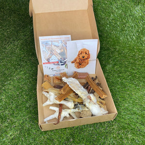 Puppy Treat Box