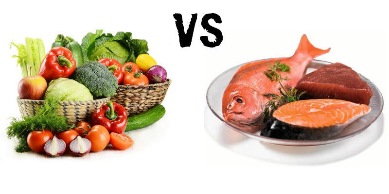 Proteína Vegetal vs Proteína animal