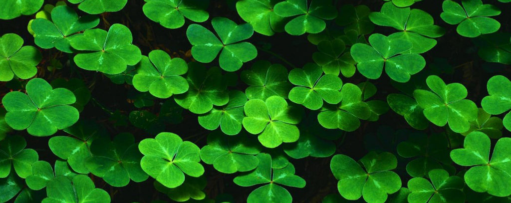 HAPPY-ST-PATRICK-DAY-AF-JEWELERS-ST-HELENA-NAPA-VALLEY
