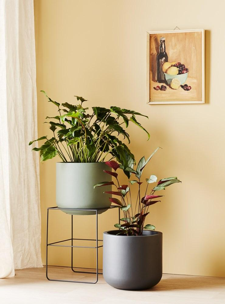 EVERGREEN COLLECTIVE Alto Pot Stand - Short - Charcoal