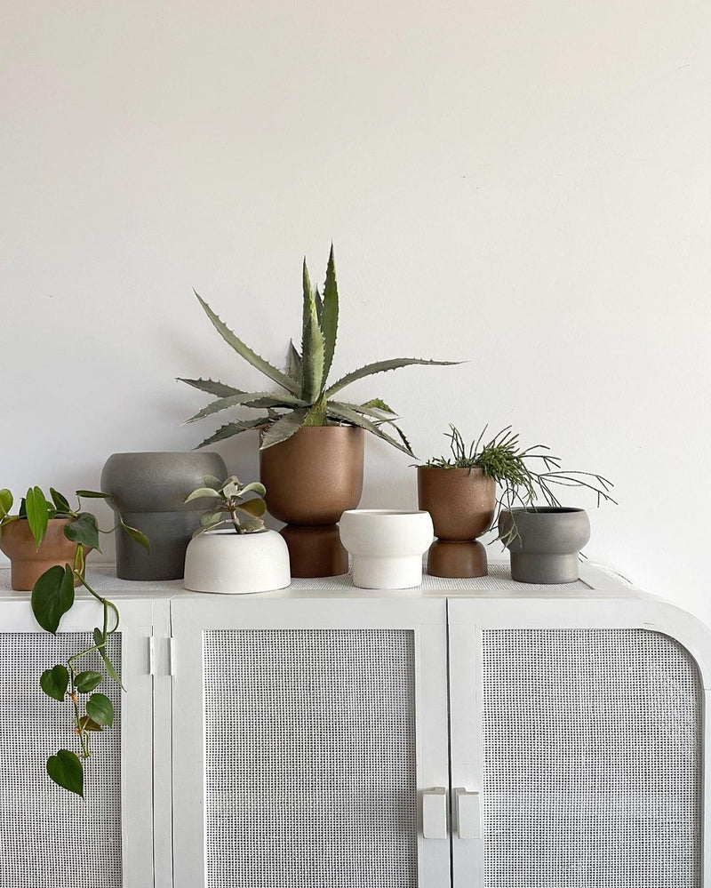 MRD HOME Blanche Planter - Medium & Large Clay