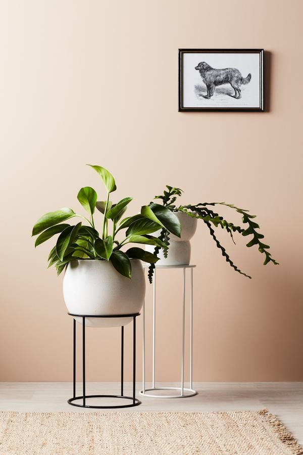 EVERGREEN COLLECTIVE Bower Pot - Large