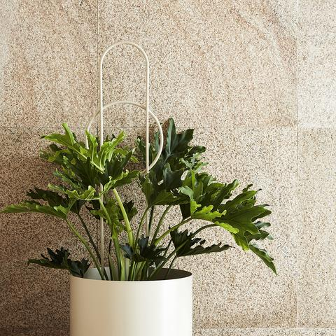 Ivy Muse Dot Plant Stake - Stone