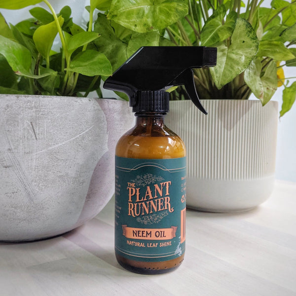 The Plant Runner - Neem Oil - 250ml