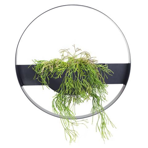 Ivy Muse Unity Wall Planter - Black