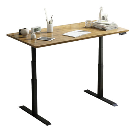 dual stand up desk