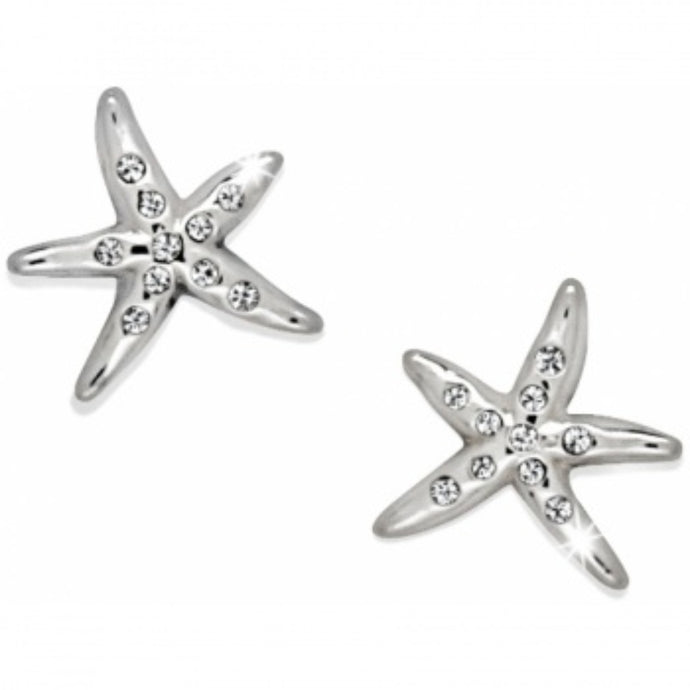 Brighton Starfish Stud Earrings