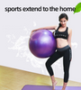 Bodytrends Exercise Ball