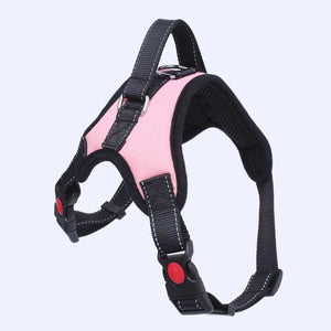 Heavy Duty Pet Harness Collar - Couture Whiskers