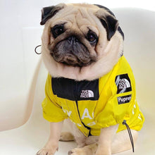 Load image into Gallery viewer, DogFace Windbreaker - Couture Whiskers