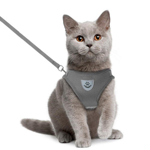 Adjustable Reflective Harness - Couture Whiskers