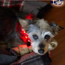 Load image into Gallery viewer, Durable LED Pet Leash Adjustable USB Pet Dog Collar Can Be Recycled Using Charging Light Lights Walk Dog Collar Pet Leash
