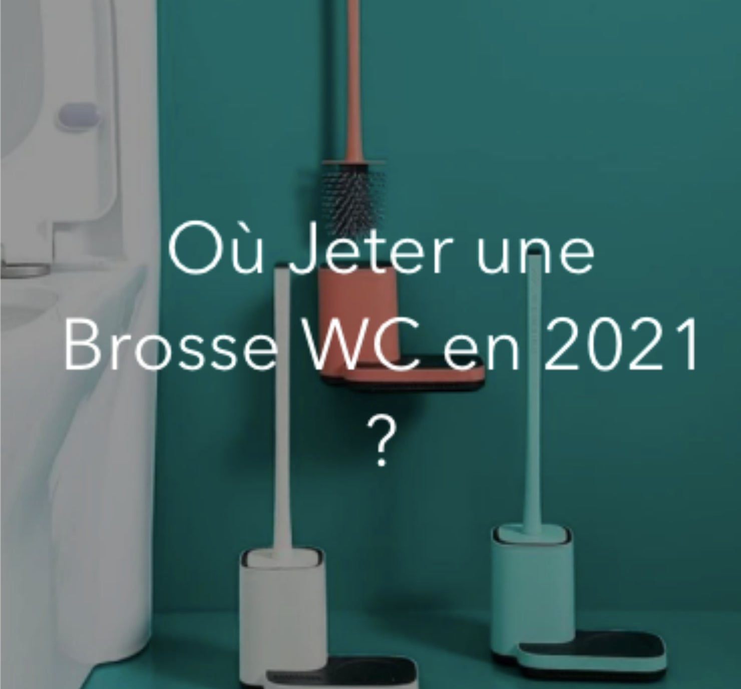 Peut-on-recycler-brosse-WC-blog-lepetitcoindesign.com